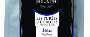 Pasterizirani pire od kupine, 1kg - Léonce Blanc